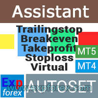 Exp Assistant - Expert Assistant accompanied by positions_1